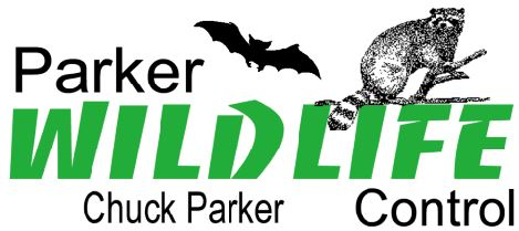 Parker Wildlife Control - New Orleans Bat Removal